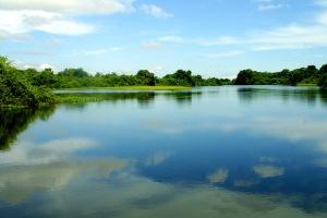 Paisagem-Pantanal-028